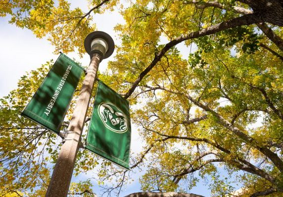 CSU Rams banner outside in fall